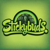 Stickybuds - Fractal Forest Mix (Shambhala 2011)