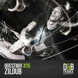 Guest Mix DnbFrance #25 - Ziloub