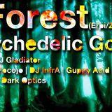 E/pic Forest (Mitschnitt 8/14) feat. Infra