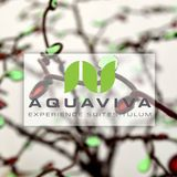 LiveSet_part_1@aquaviva_tulum(xwART)014