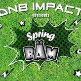 E.Decay & MC Mighty P @ DnB Impact 2016