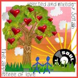 Soul Cool Records/ Sotah - The Apple Tree of Love