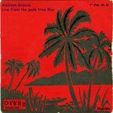 Addison Groove Palm Tree Mix - Nov 2016