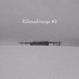Rillenschlange #2
