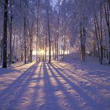 Snowy Winter Mix