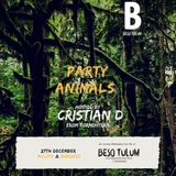 Beso Tulum · Dj Cristian D.