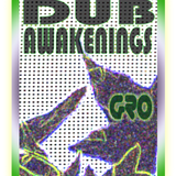Dub Awakenings Show 53: NEW  YEARS DAY 2011