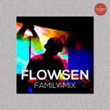 FLOWSEN - DRUM AND BASS WUERZBURG - FAMILY MIX