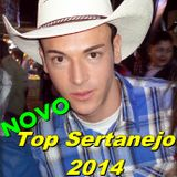 NOVO Top Sertanejo 2014