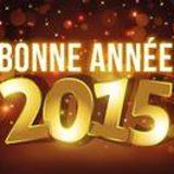 bonne année _ 1iere partie_31 decembre 2o14