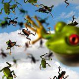 DJ Ramses Hoppa - It's Been Raining Frogs (Classic Goa)
