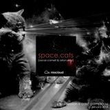 Space Cats - Live Session @ Casa Pompidou [January 2014]