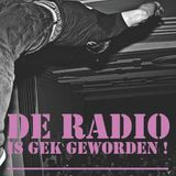 De Radio Is Gek Geworden 12 november 2012