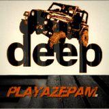 Playazepam - Summer 2016