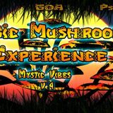 DJ SETI - Magic Mushrooms Experience