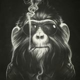 The Slow Burning Doobie of The Smokey Monkey