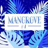 Mangrove #4 18-11-17