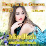 Deep in the Groove 027 (17.03.17)