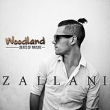 DJ contest for WOODLAND Festival 2017:  Zallani