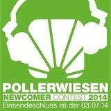 Pollerwiesen Newcomer Contest 2014