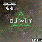 GoaProductions Radio 045: DJ WHY