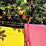 Sweet Lemonade x Dublab