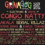 Mixmaster Morris @ Grinagog Festival Torquay 2