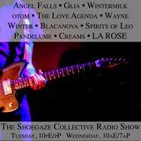 THE SHOEGAZE COLLECTIVE RADIO SHOW ON DKFM- SHOW 58 - 2-6-18