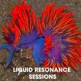 Liquid Resonance - San Francisco August Bike Party 2015