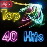 R3DBIRD - Top 40!