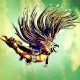 Fly Psycadelic
