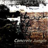 Concrete Jungle (Chill&DubTrip)