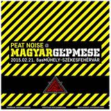 Peat Noise @ Magyar Gépmese, 8-as Műhely, Székesfehérvár (Hungary) (21.FEB.2015)