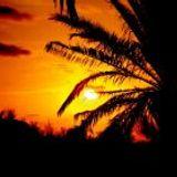 Nation2K - Ibiza Sunset