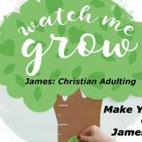 Christian Adulting - Make Your Faith Complete - Audio