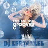 deep and funky grooves - mixed with love (Nu-Disco Indie Dance DJ Mixtape)