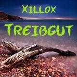 Xillox - Treibgut Original Mix 145 BPM