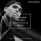 20 Mins Of Chris Brown - Dj Shaan #TwentyIsPlenty