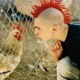 junk van punk 21