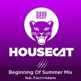 Deep House Cat Show - Beginning Of Summer Mix - feat. Foxx'n'Adams