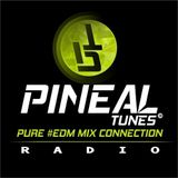 "PINEAL TUNES RADIO MIX EDM 8 ""Pure EDM Connection"""