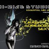 Essential Mix 2011 - Volume 2