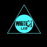 Whitek Lab 001 - giuseppe mulè 11/11/2014