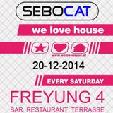 Sebocat - live @ we love house - Freyung 4 // 20-12-2014
