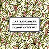 DJ Street Baker - Spring Beats Mix
