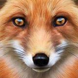 FoxXxy Need Love 2