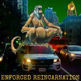 The Enforced Reincarnation Hour -- Bigger Than Pigs