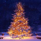 Kerstviering live op Radio Exclusief 1995
