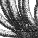 X Beat 03 - Desanimaux - Naturalienkabinett