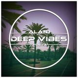 Deep Vibes Vol.13